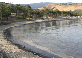 An oiled beach.