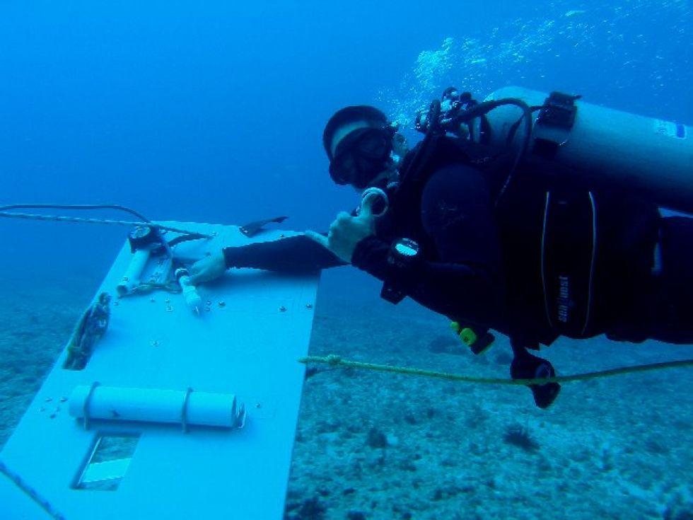 A scuba diver underwater.