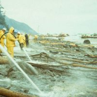 Clean up workers spraying an oiled beach.