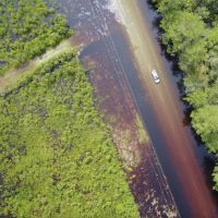 An aerial image of a vehicle driving down a flooded road with flooded forest to both sides.