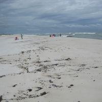 Tarballs on a beach.