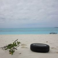 Branch and tire on white sand beach.