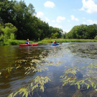 Two kayakers on a river lined with greenery.