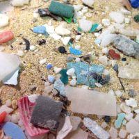 Microplastics.
