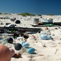 Marine debris on a beach.