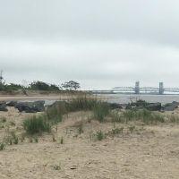 Beach with dune grass.