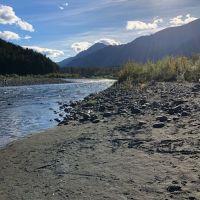 A riverbank.