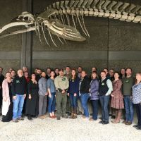 Large group posing under a mounted whale skeleton.