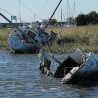 Damaged vessels and other debris.