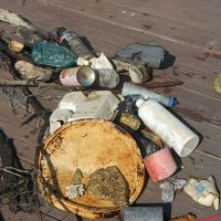 Debris pulled from Lake Erie laying on a dock.