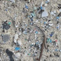 Bits of plastic and debris on sand.