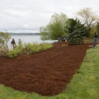 People spreading mulch.