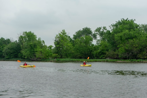 Kayakers on a river.