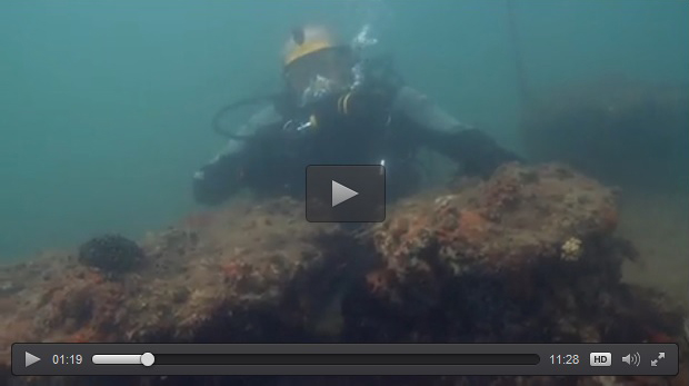 Video frame of a diver exploring a shipwreck.